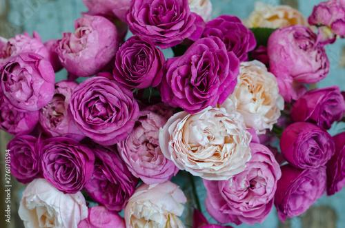 beautiful white and pink roses background and texture © DmitryDolgikh
