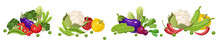 Farm Fresh Vegetables Vector S...