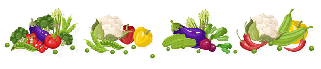 Farma svježeg povrća Vektorski set. Pohranite plakate s detaljnim ilustracijama u trgovini