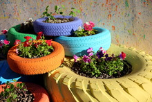 Flowerbed Of Car Tires
