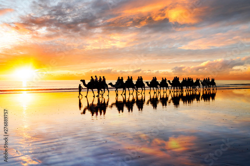 Fotobehang Bleke violet Silhouetted camels walking along Cable Beach at sunset in the north-west town of Broome, Western Australia, Australia. Camel rides at sunset are a popular tourist activity in Broome.