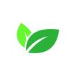Ecology Green Leaf symbol icon vector illustration