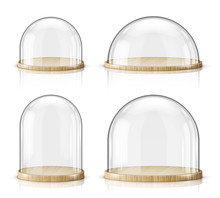 Glass Dome And Wooden Tray Rea...