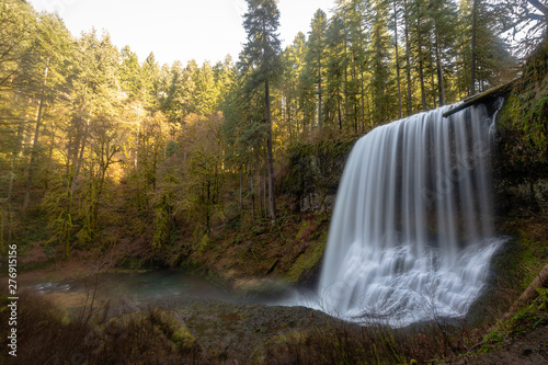 Printed kitchen splashbacks Forest river waterfall in forest in Oregon Silver Falls State Part
