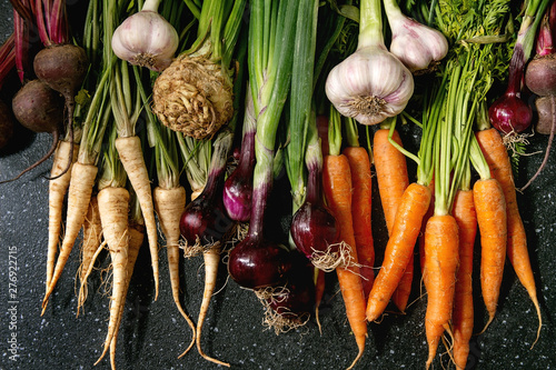 Valokuva  Variety of root garden vegetables carrot, garlic, purple onion, beetroot, parsnip and celery with tops over black texture background