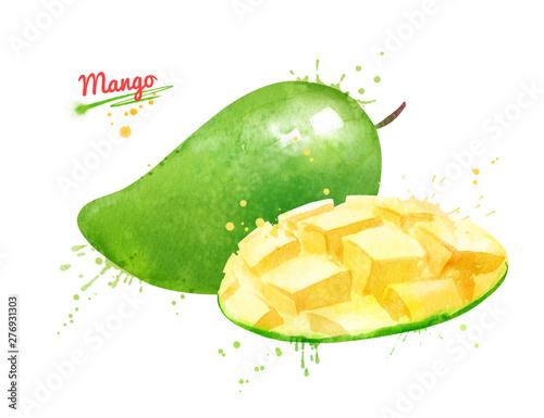 Cuadros en Lienzo Watercolor illustration of green mango