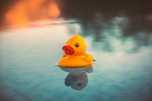 Small Yellow Rubber Duck Floating On An Infinity Pool At Sunset With Reflections That Look Like It Could Be On A Lake With Tree Shadow Reflections.