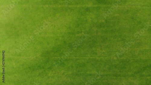 Foto auf Leinwand Gras Aerial. Green grass texture background. Top view from drone.