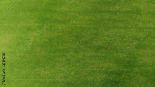 Foto auf AluDibond Grun Aerial. Green grass texture background. Top view from drone.