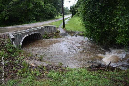 Rain Water Slika na platnu
