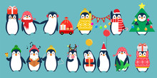 Christmas Penguin Characters. Penguins Cartoon Vector Illustration.