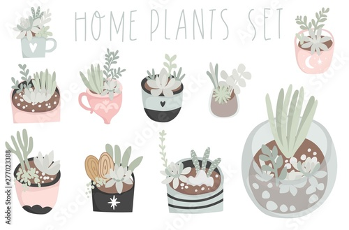 Photo Cute hand drawn set of different cactus, succulents