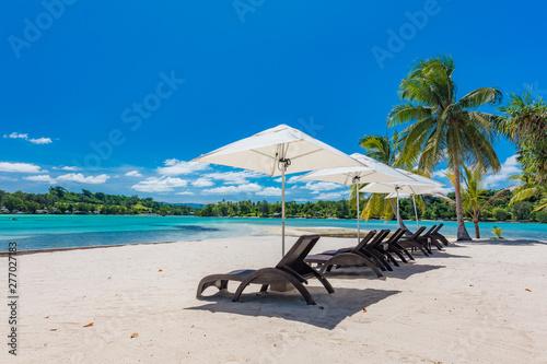 Fotografia Palm trees on a tropical beach, Vanuatu, Erakor Island, Efate