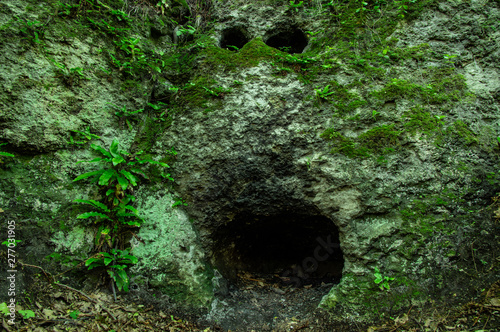 Fotografía The entrance to the cave in the form of a human face