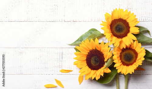 In de dag Zonnebloem Beautiful yellow sunflowers with leaves