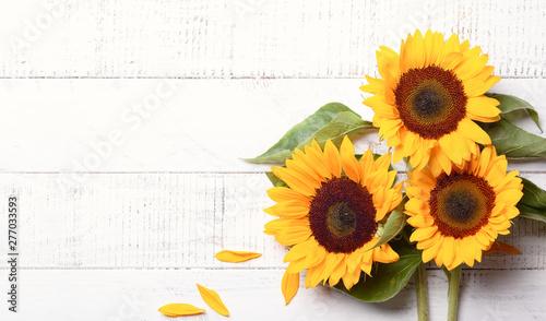 Photo sur Aluminium Tournesol Beautiful yellow sunflowers with leaves