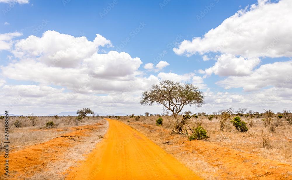 Fototapety, obrazy: Safari road in Kenya