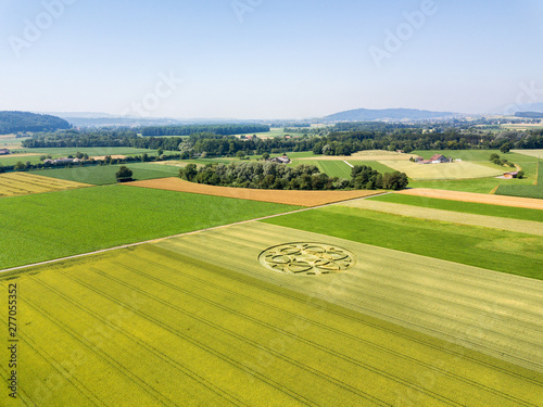Crop circle in wheat field in Canton Bern, Switzerland Poster Mural XXL