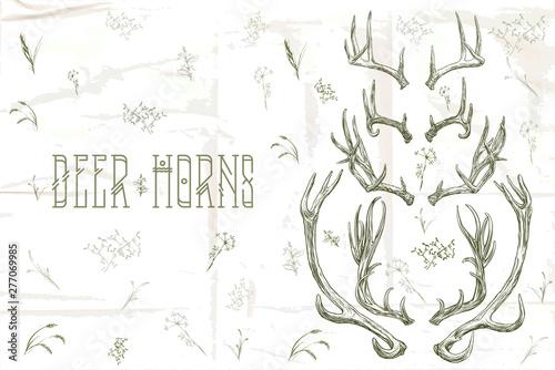 Obraz na plátně  Vector illustration