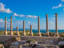 Ancient Roman Ruins In Tyre, Lebanon