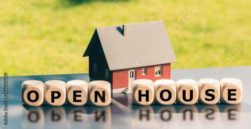 Fotografija Open house concept
