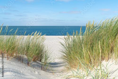 Foto-Schiebegardine Komplettsystem - Dune with beach grass.