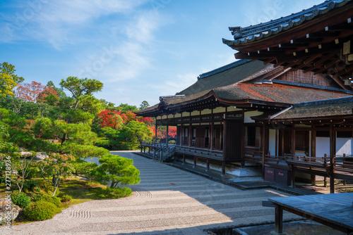 京都 仁和寺の紅葉 Wallpaper Mural