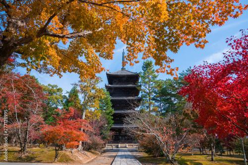 京都 仁和寺の紅葉 Canvas Print