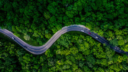 Forest Road view from above, Aerial view asphalt road in tropical tree forest with a road going through with car, Adventure in Asia background concept.