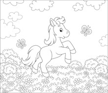 Cute Little Pony Dancing With Funny Butterflies Among Flowers On A Meadow On A Sunny Summer Day, Black And White Outline Vector Illustration In A Cartoon Style For A Coloring Book