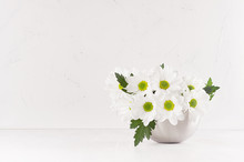 Beautiful Fresh Spring White Gerberas With Yellow Eyes In Silver Modern Vase In Modern Soft Light White Interior.