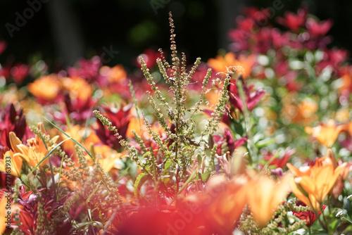 Montage in der Fensternische Darknightsky Florales Muster aus Lilien