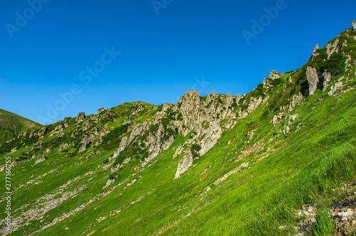 Rocks in the Carpathian mountains #277166755
