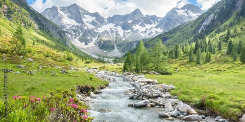 Cadres-photo bureau Pistache Panorama eines Wandergebietes in den Alpen mit Wildbach und Gletscher im Hintergrund