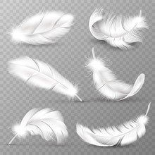 Realistic White Feathers. Birds Plumage, Falling Fluffy Twirled Feather, Flying Angel Wings Feathers. Realistic Isolated Vector Set