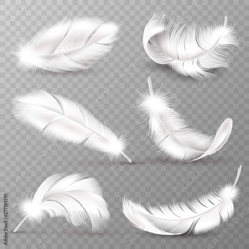 Realistic white feathers. Birds plumage, falling fluffy twirled feather, flying angel wings feathers. Realistic isolated vector set Fotomurales