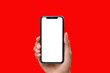 canvas print picture - Hand holding the black smartphone with blank screen and modern frame less design on red colour background