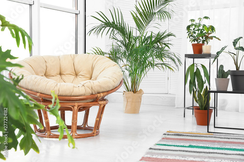 Living Room Interior With Papasan Chair