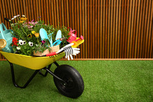 Wheelbarrow With Flowers And G...