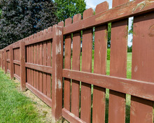 Wooden Privacy Fence In Backyard With Peeling Paint And Stain And Green Algae, Mildew, Moss, On Boards