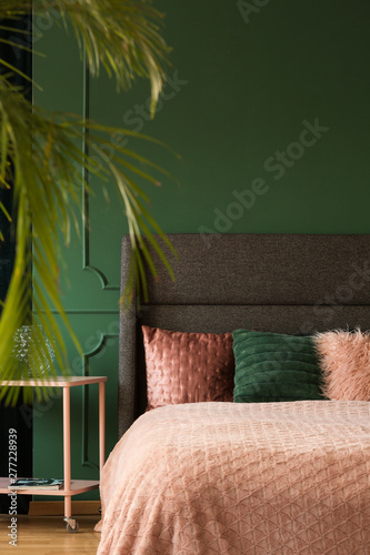 Real photo of green and pink modern bedroom - Buy this stock ...