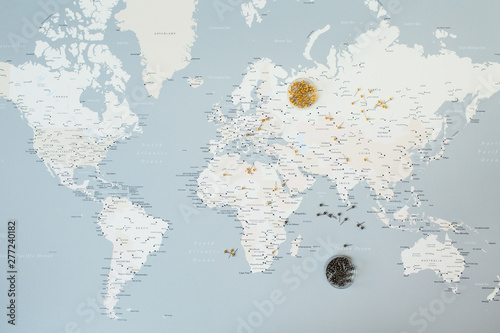 Poster de jardin Route World map with pins. Flat lay travel planning composition.