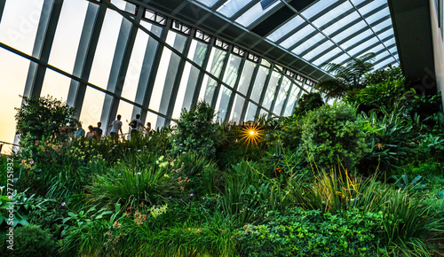 The Sky Garden  at 20 Fenchurch Street is a unique public space designed by Rafael Vinoly Architects Wallpaper Mural