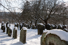 Jewish Cemetery In Hagenbach