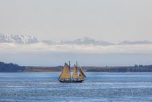 Retro Style Sailing Ship In Th...