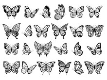 Butterfly Collection. Beautifu...