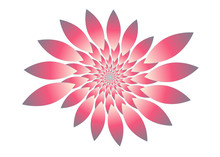Isolated Fractal Flower In Pink Shades On White