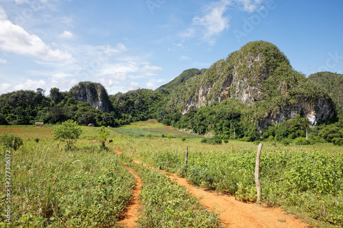 Vinales, Cuba - July 28, 2018: Vinales Valley National Park with tobacco farms, Wallpaper Mural