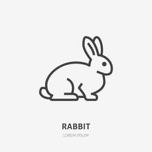 Sitting Rabbit Flat Line Icon....