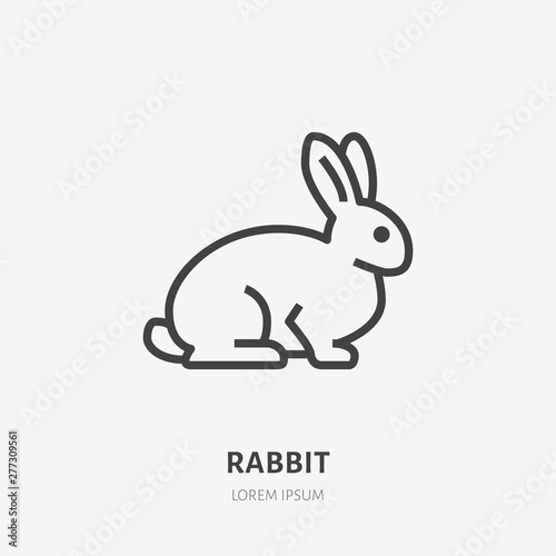 Foto Sitting rabbit flat line icon